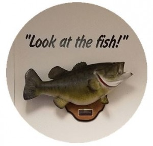 Look_at_the_fish_round